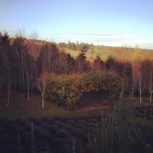 Red Ridge Farms