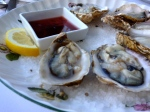 Yaquina Bay oysters
