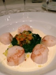 Scallops and spinach puree.